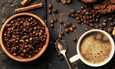 meilleurs grains de café