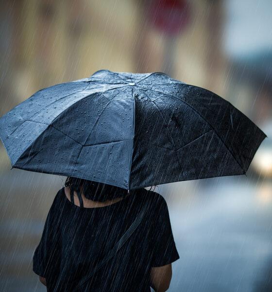 Meilleur parapluie
